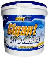 Гейнер Pro Nutrition Gigant Pro Mass (5 кг)