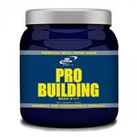 BCAA аминокислоты Pro Nutrition Pro Building BCAA 4:1:1 (500 г)