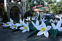 Цветы надувные распускающиеся напрокат, фото 1