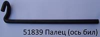 51839 Ось бичей