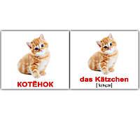 """Карточки мини русско-немецкие """"Домашние животные/Haustiere"""" 20 карт., 094118"""