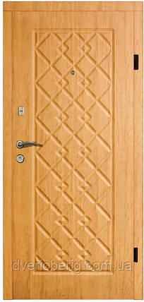 Входная дверь модель П4-156 ОЛЬХА ЯНТАРНАЯ, фото 2