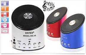 Портативна акустична система WS-A9-TDN WSTER, фото 3