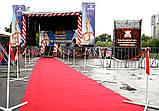 Красная дорожка напрокат, фото 4