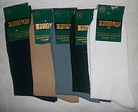 Носки мужские ЖИТОМИР хлопок оригинал  Цвет  черный ассорти Размер 39-45 ассорти, 39-42