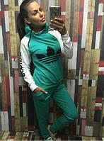 Спортивный костюм женский большие размеры (цвета) СЕВ550-1