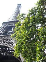 Это просто красивый Париж...