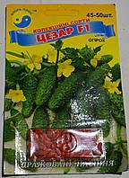 Семена Огурец Цезарь F1, фото 1