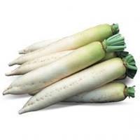 Семена редиса дайкон Титан, Kitano (Япония), 50 гр.