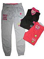Трикотажные спортивные брюки для девочек, S&D, размеры 134,140,146,152,158,164, арт. CH-3050
