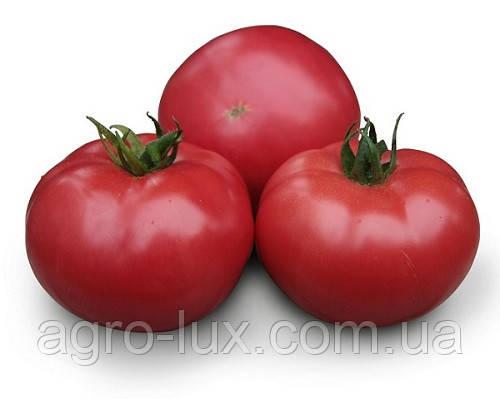Семена розового томата КС 38 F1 500 шт KS 38 (Асано) Kitano Seeds  / Китано Сидс