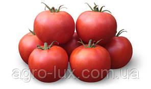 Семена Томат KS 835 F1 КС 835 1000 шт Kitano Seeds  / Китано Сидс