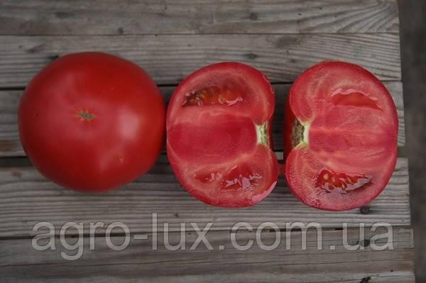Семена томата розового Кибо F1 (KS 222) 500 шт Kitano Seeds /Китано Сидс
