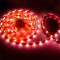 SMD 3528 светодиодная лента 5м Red 300 диодов