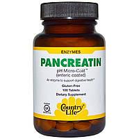 Панкреатин, 100 таблетки