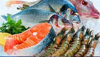 Как правильно хранить рыбу холодного копчения
