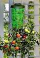 🔥✅ Topsy Turvy, Planter выращивание Овощей корнем вверх, хороший урожай,, фото 4