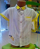 Рубашка купить