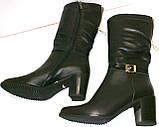 Сапоги кожаные черные молния демисезонные, фото 2