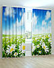 Фотошторы цветы ромашки, фото 4