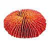 Декорація для акваріума Trixie Набір коралів, 10-13 см (4 шт).