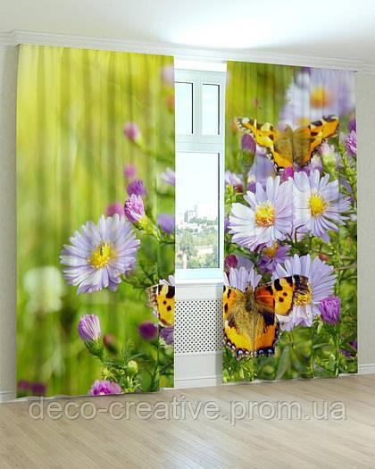 Фотошторы цветы ромашки