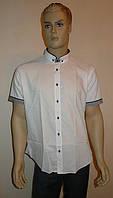 Молодежная белая рубашка Dergi, фото 1