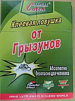 Клеевая ловушка книжка от крыс и мышей большая 30см*40см качество