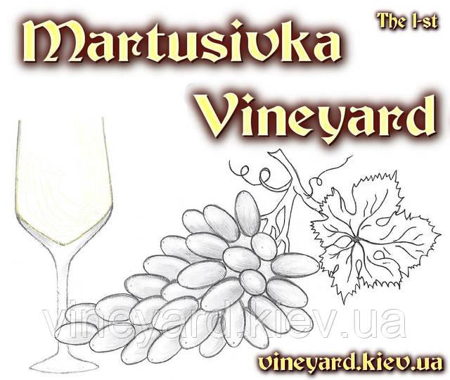 рассада клубники, земляники ранней, ремонтантной, нейтрального дня, винограда раннего