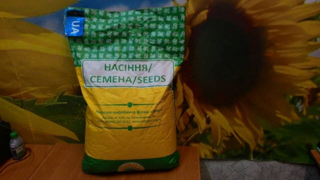 Семена подсолнечника Толедо под Гранстар  (Палента Технолоджи, Аргентина) урожайный, засухоустойчивый гибрид,, фото 2