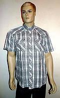 Рубашка AYGEN в черную клетку короткий рукав, фото 1