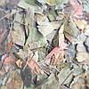 Гинкго Билоба (Ginkgo Biloba), 250 г