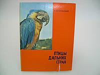 Пухальский В. Птицы дальних стран.