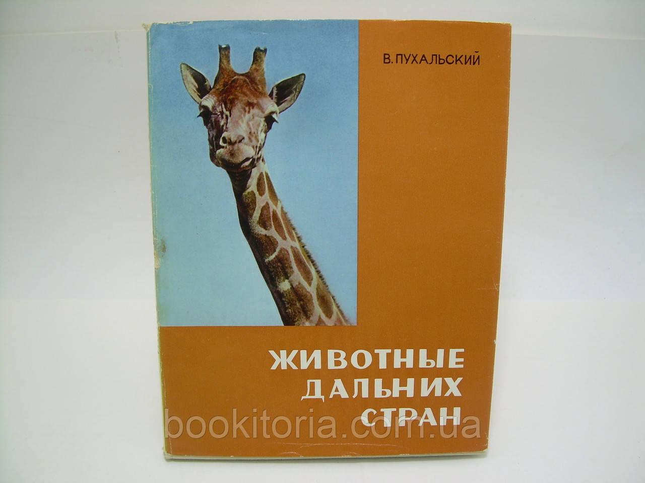 Пухальский В. Животные дальних стран (б/у).