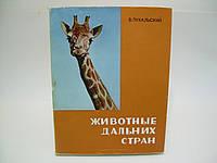 Пухальский В. Животные дальних стран (б/у)., фото 1