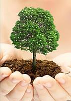 Вермигрунт для органического земледелия.