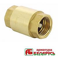 "Обратный клапан 1"" (25 мм) пластиковый шток Арматура Беларусь KOL23"