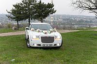 Украшение на авто (9), фото 1