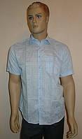 Голубая рубашка AYGEN с коротким рукавом, фото 1