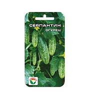 Огурец Серпантин  15 семян Сибирский сад