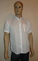 Белая легкая рубашка AYGEN, фото 1