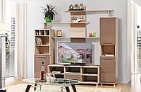 Мебель для гостиной в современном стиле Виннер-2 2200 / Вітальня Віннер-2 2200