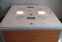 """Инкубатор бытовой  """"Курочка ряба"""" на 80 яиц с автоматическим переворотом(цифровой терморегулятор)"""