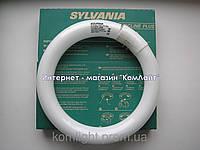Лампа круглая Sylvania FC 22W/865 G10q (Тайланд)