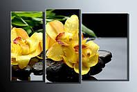 """Модульная картина на холсте из 3-х частей """"Желтые орхидеи"""""""