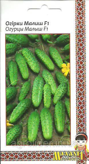 Семена огурец Малыш F1 0.5г Зеленый (Малахiт Подiлля)