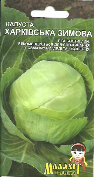 Семена капуста Харьковская зимняя 1г Зеленая (Малахiт Подiлля)