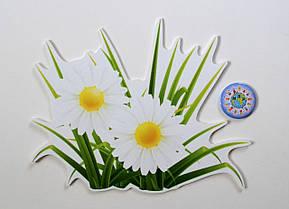 Ромашки. Настенная декорация для детского сада.