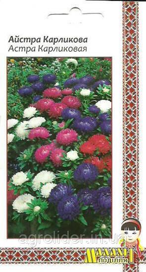 Семена цветов Астра Карликовая 0.5г (Малахiт Подiлля)