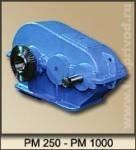 Редуктор РМ-250